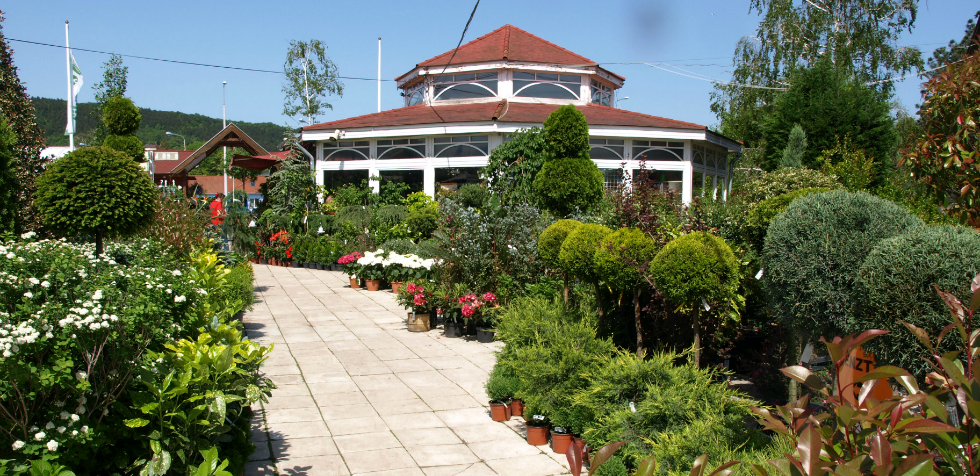 Silvanus kertcentrum
