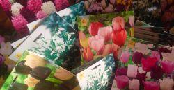 Tavasszal virágzó hagymások